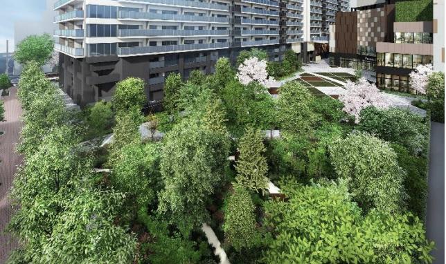 亀戸六丁目計画「芝生エリア」完成予想図イメージ
