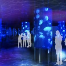 DMMかりゆし水族館の内観イメージ1