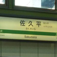 佐久平駅の駅名標の写真