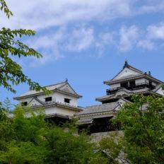 愛媛県の松山城の風景写真