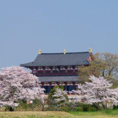 近鉄奈良線が横切る状態の平城宮跡の風景
