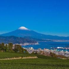 静岡県から見た富士山の風景写真