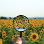 インスタのハッシュタグ複数検索ツール&サイト【Instagram】