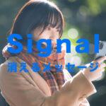 Signal(シグナル)で消えるメッセージ機能のやり方は?【メッセージアプリ】