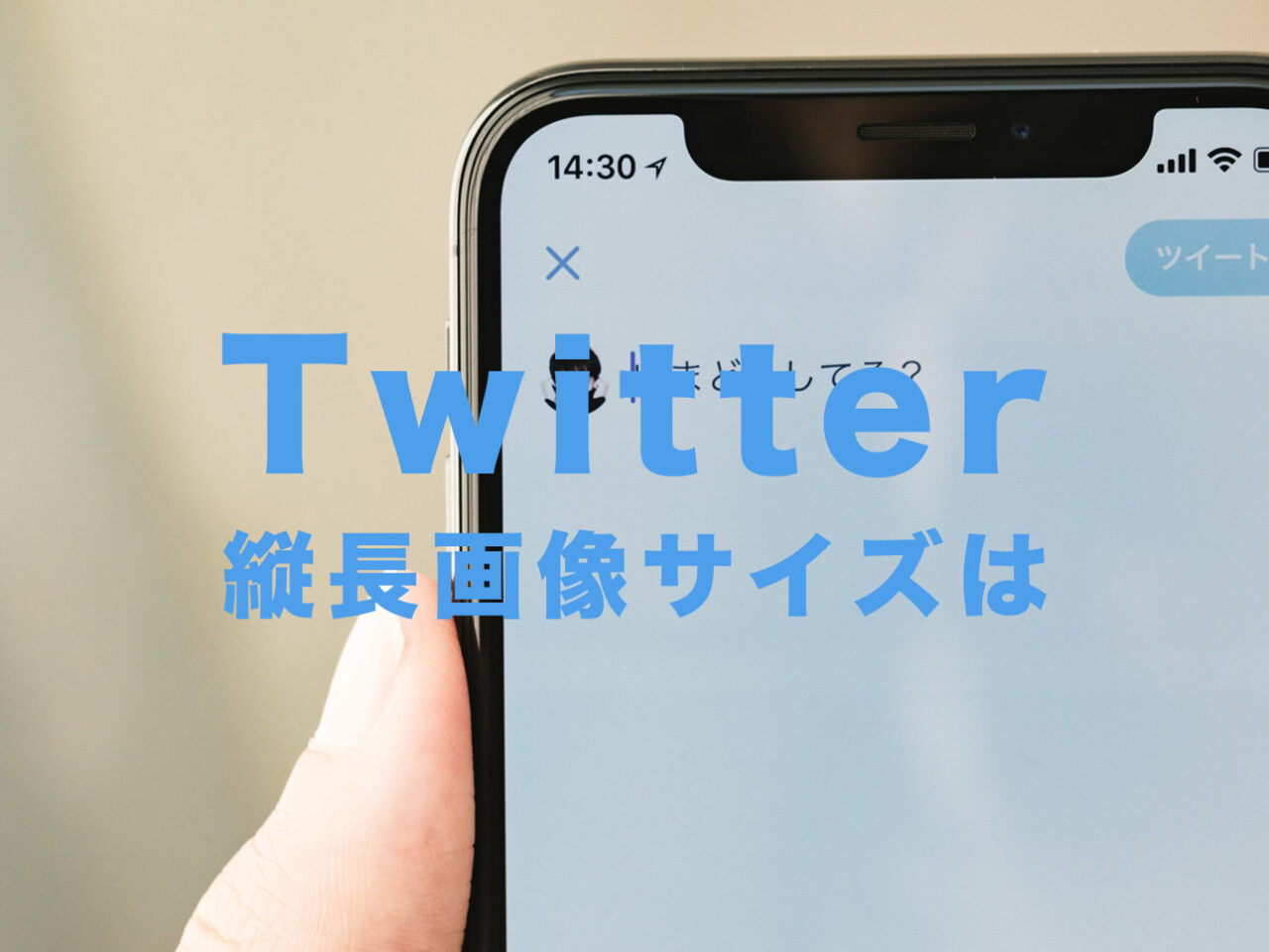 Twitter(ツイッター)で縦長画像の途切れないサイズや比率(アスペクト比)を解説!のサムネイル画像